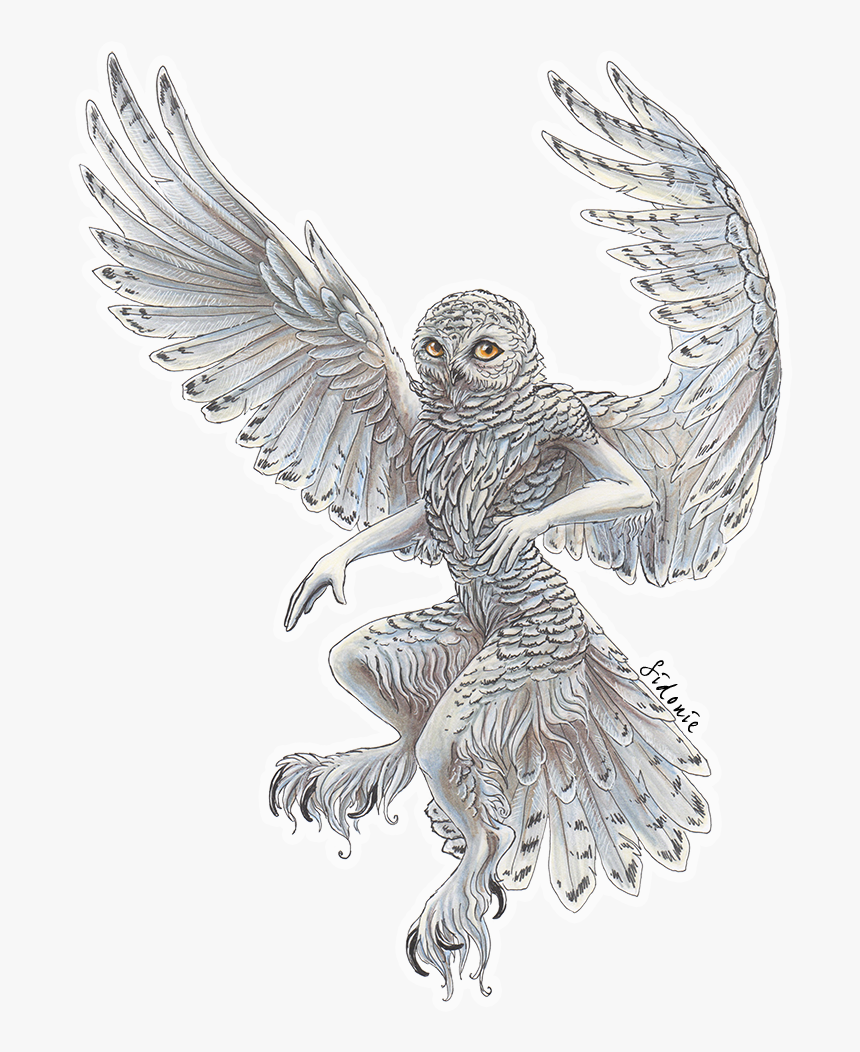 Cute Owl Flying~ - Owl Tattoo Designs Clipart (#3504453) - PikPng