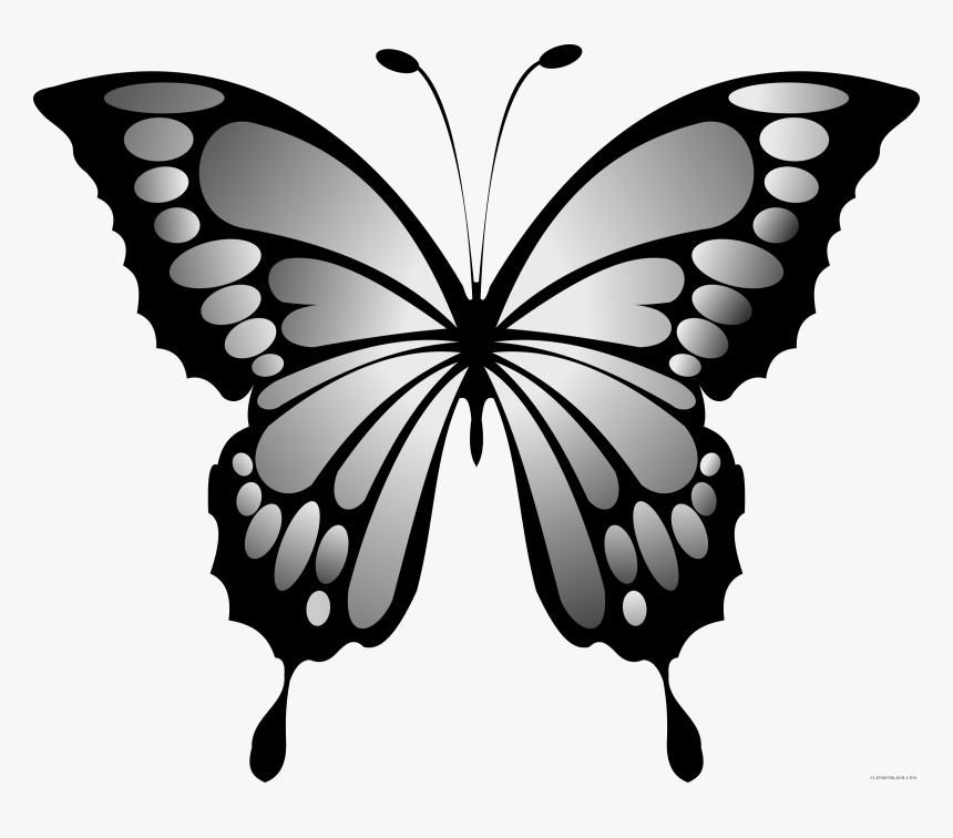 999+ Butterfly Clipart Black and White [Free Download] - Cloud Clipart | Butterfly  clip art, Butterfly black and white, Butterfly drawing