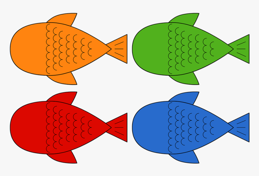 Peixes Peixinho Pesca Mar Carpas Fish Colorido Peixe Para