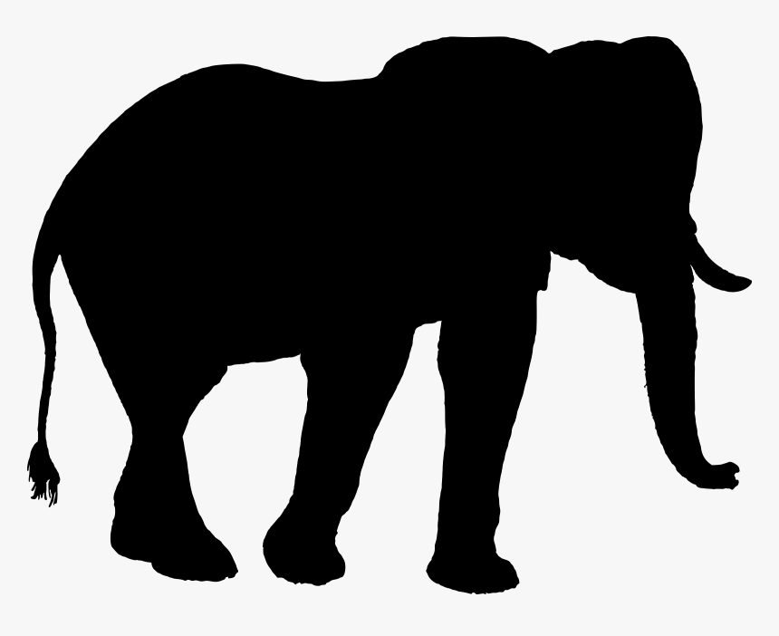 Indian Elephant African Elephant Silhouette Clip Art Elephant Hd Png Download Transparent Png Image Pngitem 1000 x 1000 png 30 кб. pngitem