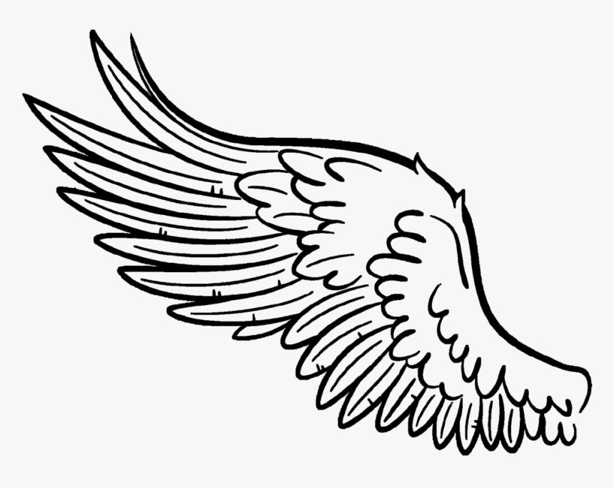 Transparent Garuda Pancasila Png Gambar Sayap Burung Png Png Download Transparent Png Image Pngitem