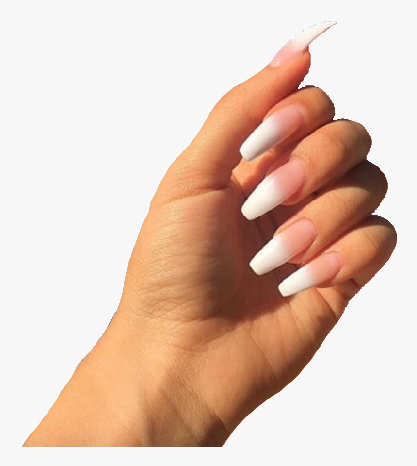 Acrylic Nails Meme Png Transparent Png Transparent Png Image Pngitem A few other vertebrates such as the koala (which has two opposable thumbs on each hand and fingerprints remarkably. acrylic nails meme png transparent png