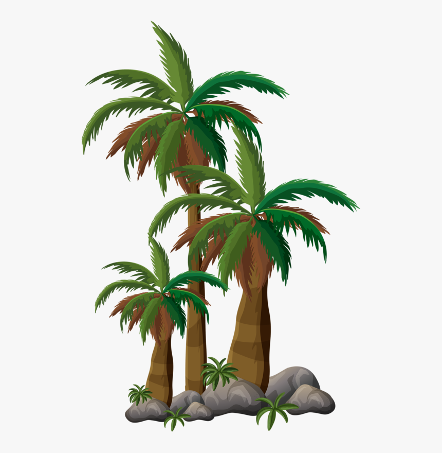 Stamp Clipart Palm Tree Free Beach Sunrise Vector Hd Png Download Transparent Png Image Pngitem