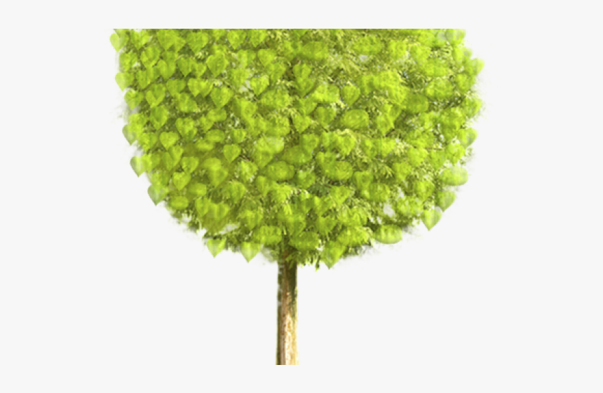 Gif Animated Tree Png Transparent Png Transparent Png Image Pngitem