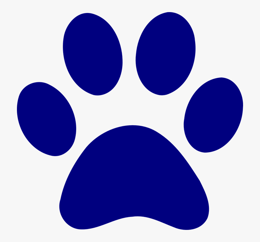 Print Dog Bear Paw Blue Blue Paw Patrol Paws Hd Png Download Transparent Png Image Pngitem Including transparent png clip art, cartoon, icon, logo, silhouette, watercolors, outlines, etc. blue paw patrol paws hd png download