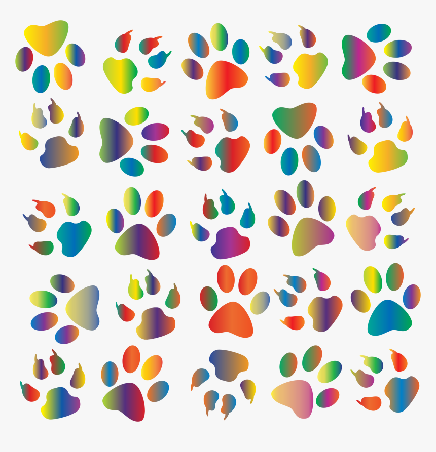 Colorful Paw Prints Pattern Background Reinvigorated Colorful Cat Paw Prints Hd Png Download Transparent Png Image Pngitem A wide variety of paw print pattern co options are available to you, such as feature, pendants or charms type, and style. colorful paw prints pattern background