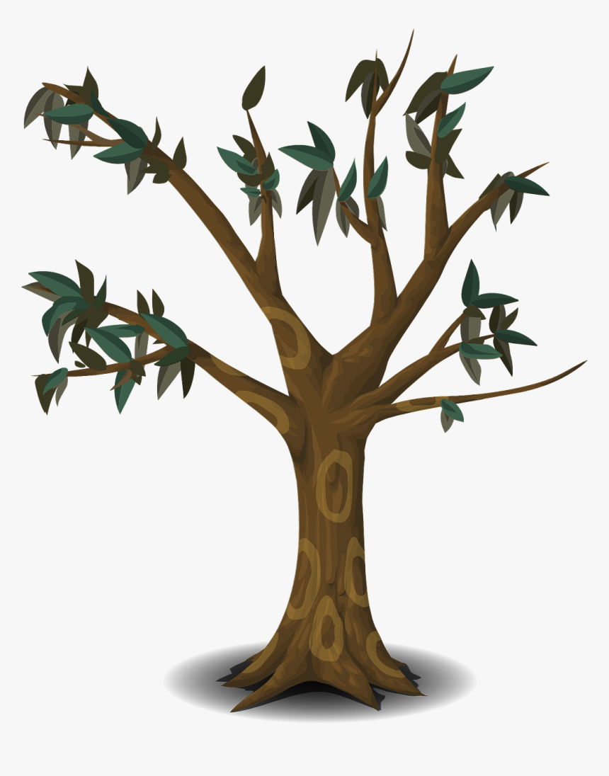 Transparent Cartoon Trees Png Cartoon Trees With Branches Png Download Transparent Png Image Pngitem 1799 × 2600 px file format: transparent cartoon trees png cartoon