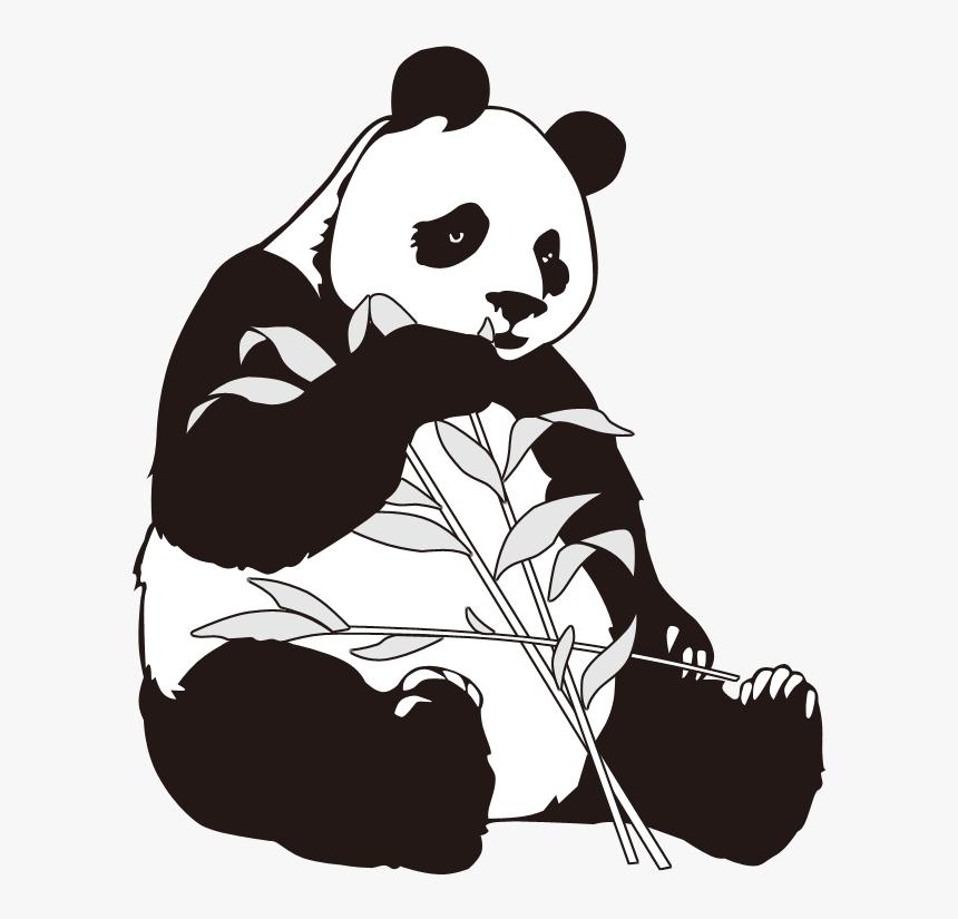 Andrew Newmind (Ficha de personaje) 425-4253977_giant-panda-bamboo-clip-art-giant-panda-cartoon