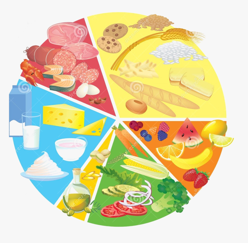 Free Healthy Plate Cliparts, Download Free Clip Art, Free Clip Art on  Clipart Library