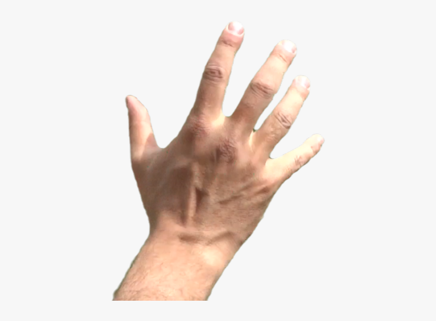 Thumb Image Hand Grabbing Png Transparent Png Transparent Png Image Pngitem What's more, other formats of object hand, product material. hand grabbing png transparent png