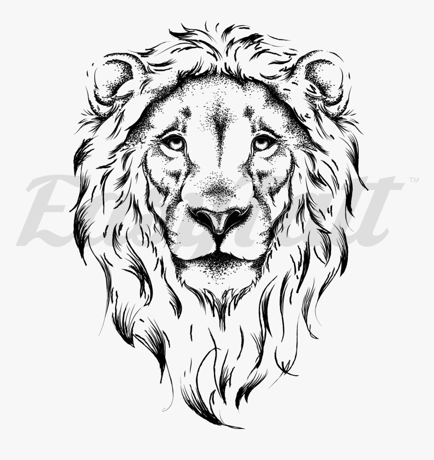 Lion Face Outline Lion Face Drawing Hd Png Download Transparent Png Image Pngitem Choose from over a million free vectors, clipart graphics, vector art images, design templates, and illustrations created by artists worldwide! outline lion face drawing hd png