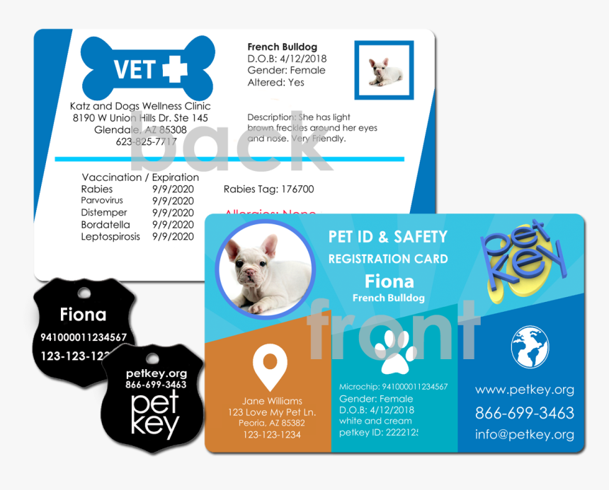 Order Pet Id Card Nationwide Pet Insurance Card Hd Png Download
