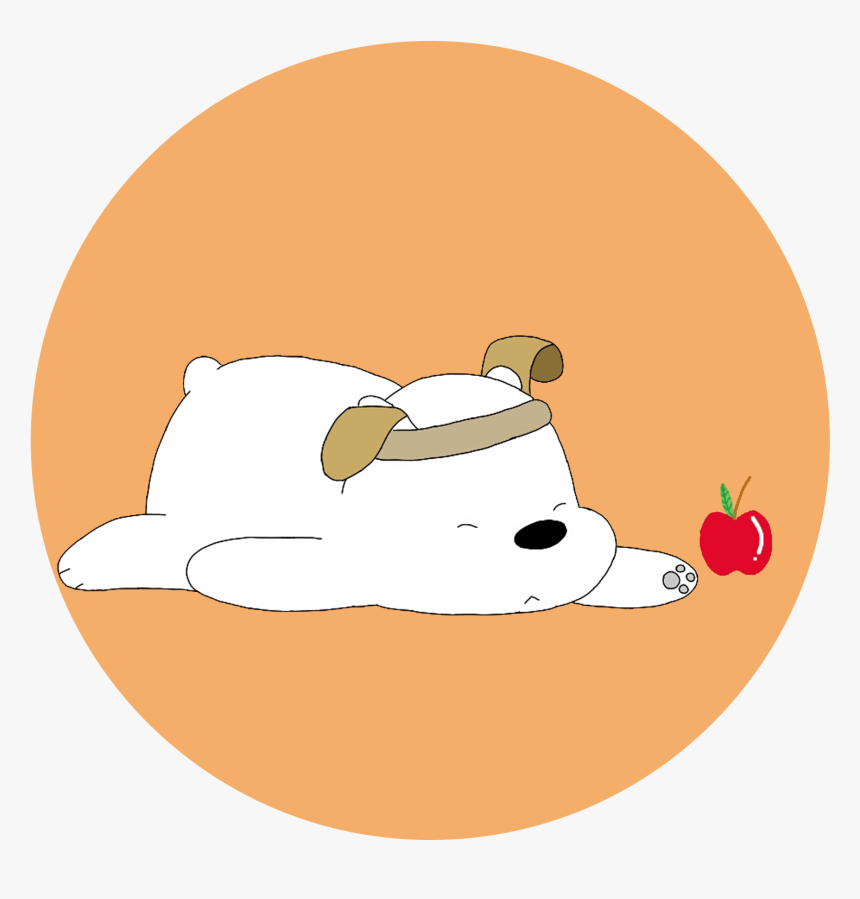 Transparent Ice Bear Png Ice Bear Pictures We Bare Bears