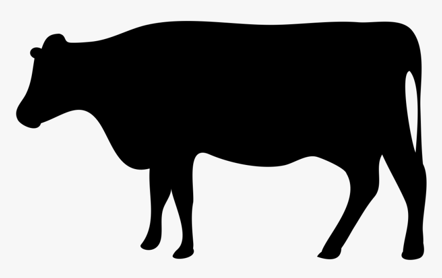 Beef Cattle Dairy Farming Livestock Dairy Cattle Transparent Beef Cow Icon Hd Png Download Transparent Png Image Pngitem