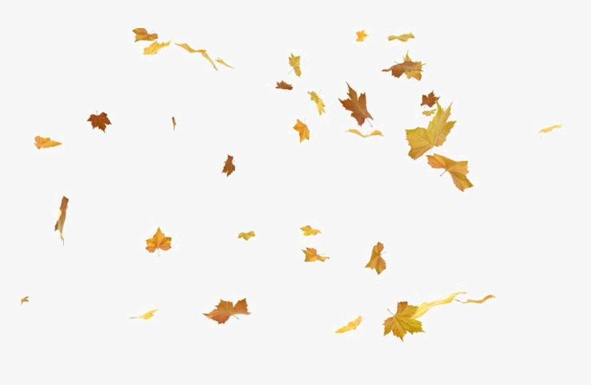 Falling Leaves Png Autumn Falling Leaves Png Transparent Png Transparent Png Image Pngitem