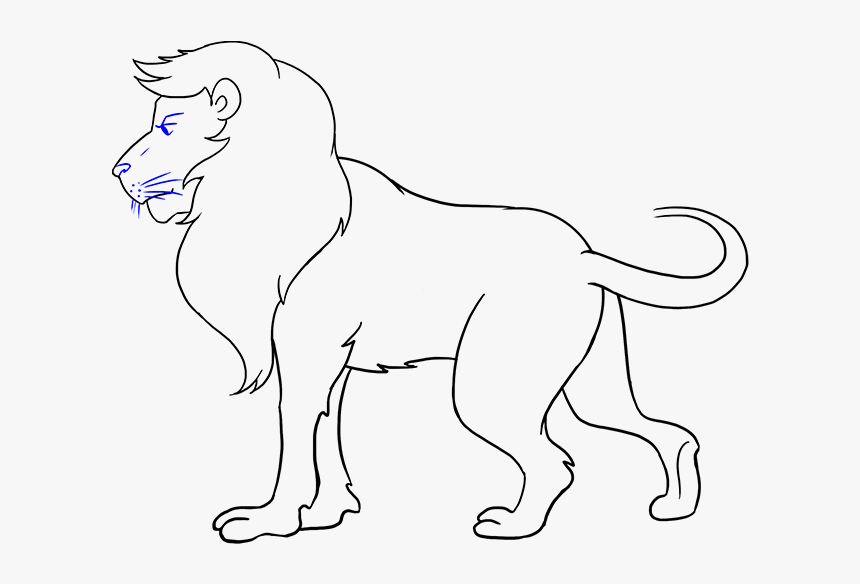 Transparent Lion Lion Images For Drawing Hd Png Download Transparent Png Image Pngitem Download 1046 lion cliparts for free. transparent lion lion images for