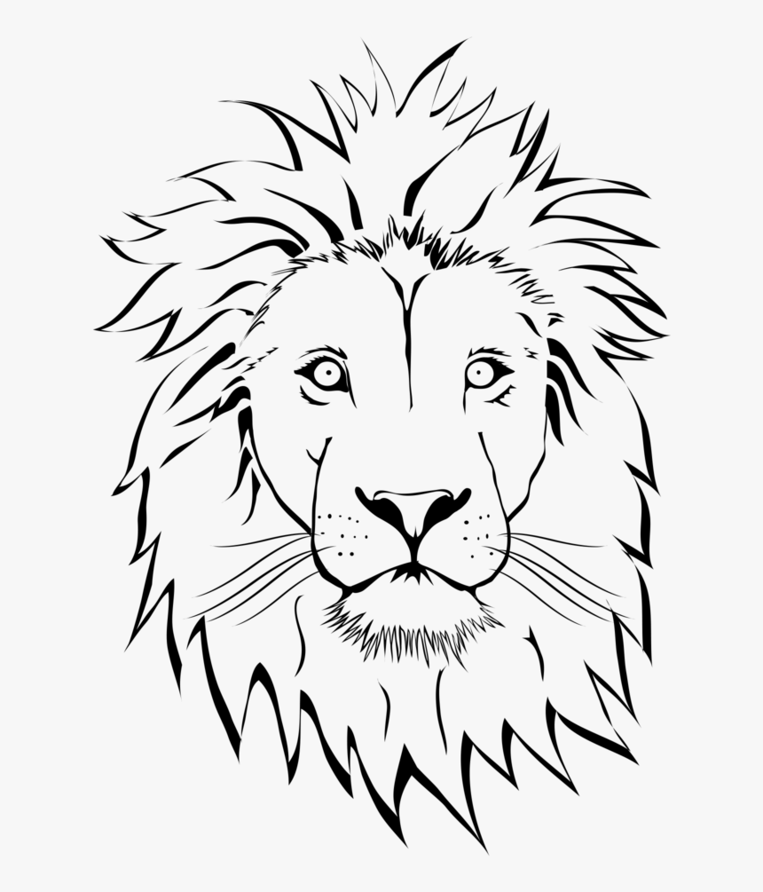 Lion Tattoo Png Image Free Download Searchpng Lion Face Line Drawing Transparent Png Transparent Png Image Pngitem Similar with lion outline png. lion tattoo png image free download