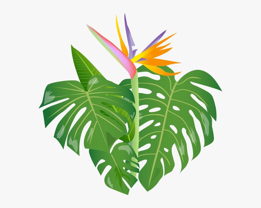 Shrub Clipart Jungle Cartoon Jungle Leaves Png Transparent Png Transparent Png Image Pngitem