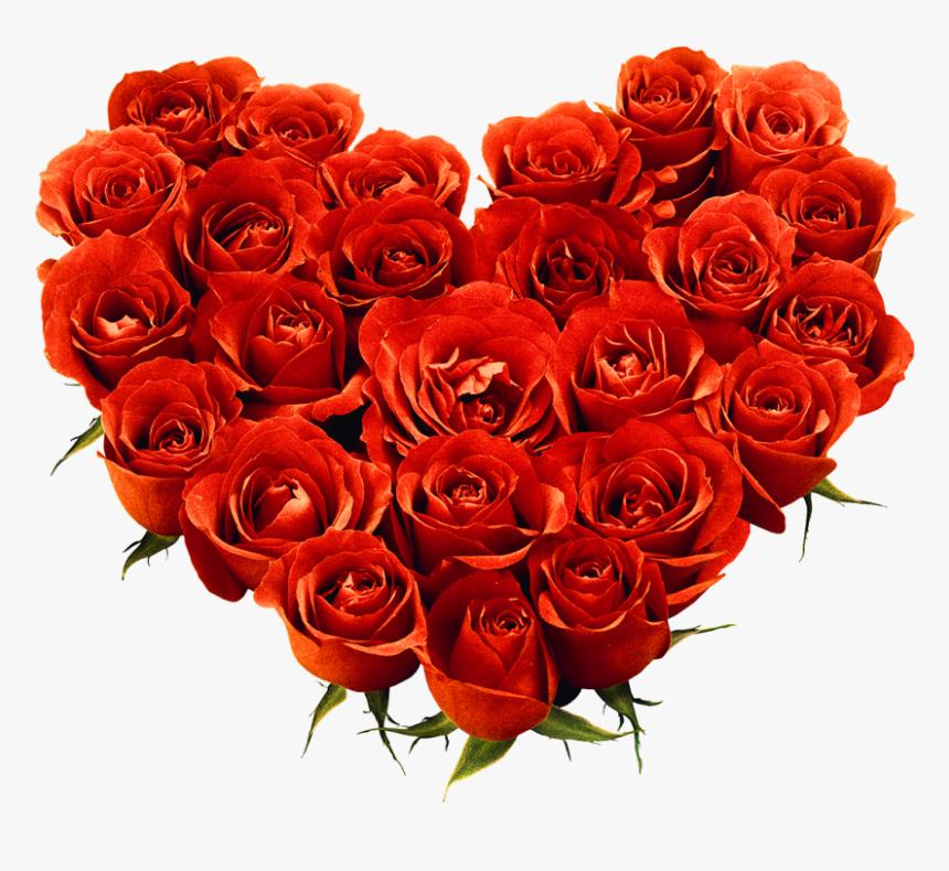 Red Rose Png Image Love Rose Flower Png Transparent Png Transparent Png Image Pngitem