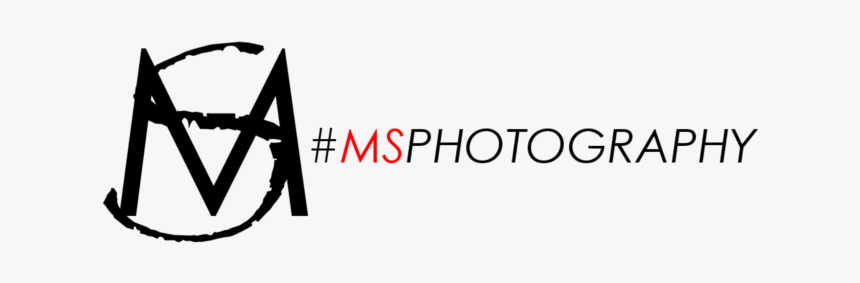 ms photography logo png transparent png transparent png image pngitem ms photography logo png transparent