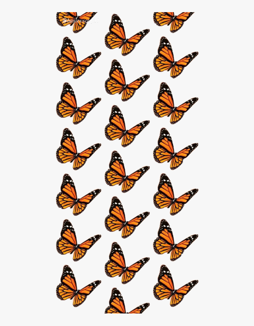 Aesthetic Pretty Butterfly Vsco Vsco Butterfly Background Hd Png Download Transparent Png Image Pngitem