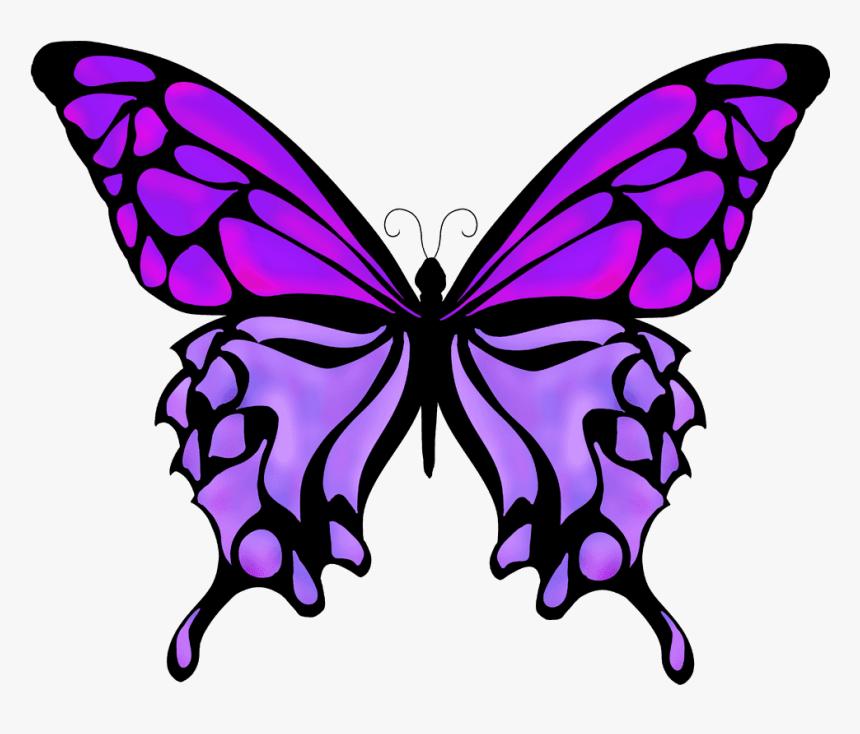 Butterflies Drawing Color Silhouette Butterfly Vector Png Transparent Png Transparent Png Image Pngitem