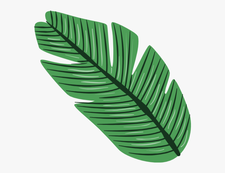 Tropical Leaves Png Vector Transparent Png Transparent Png Image Pngitem Vector set of tropical leaves. tropical leaves png vector transparent