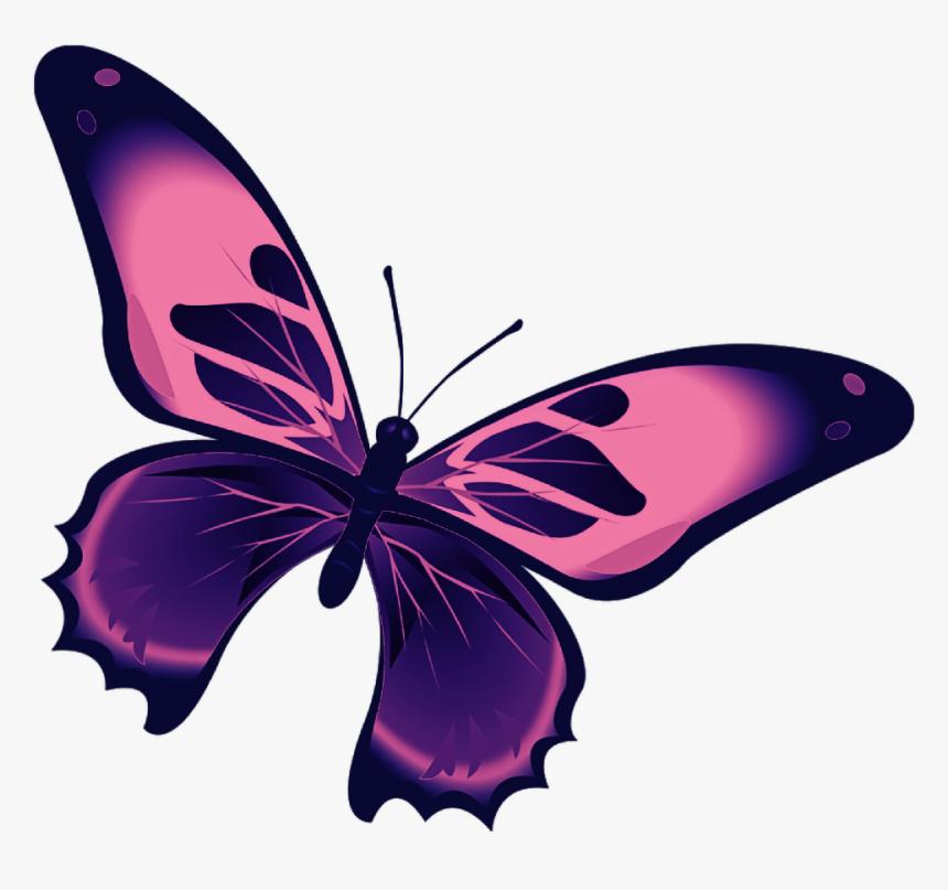 Butterfly Mariposa Diurna Day Diurnal Spring Kupu Kupu Hitam Putih Hd Png Download Transparent Png Image Pngitem
