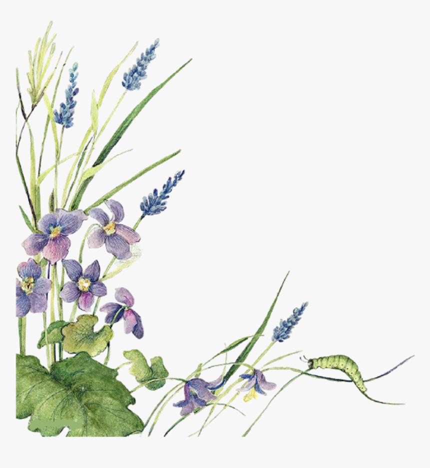 Ftestickers Watercolor Flowers Border Lavender Watercolor Sage