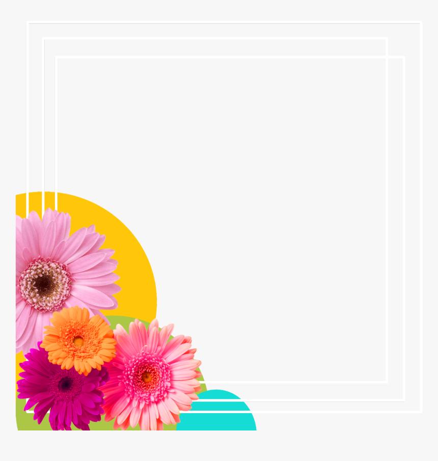 87 Gambar Bunga Florist Paling Bagus Bingkai Frame Bunga Hd Png
