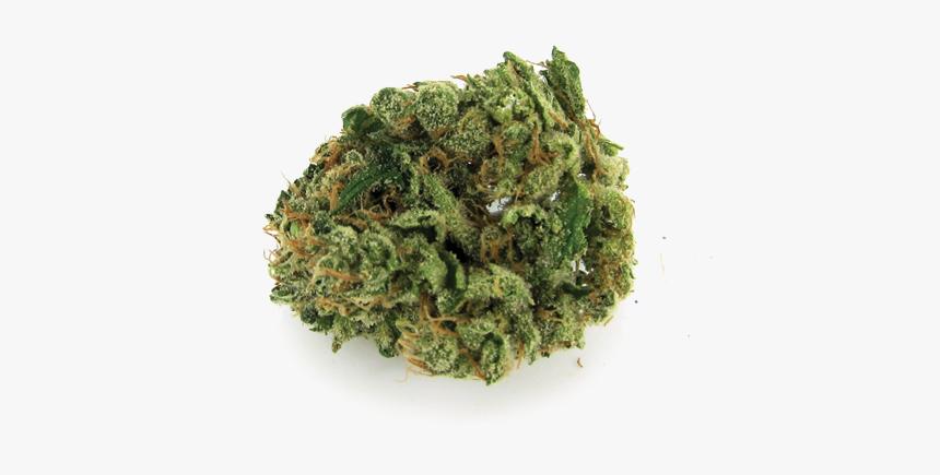 Durban Poison Nug Of Weed Png Transparent Png Transparent Png Image Pngitem