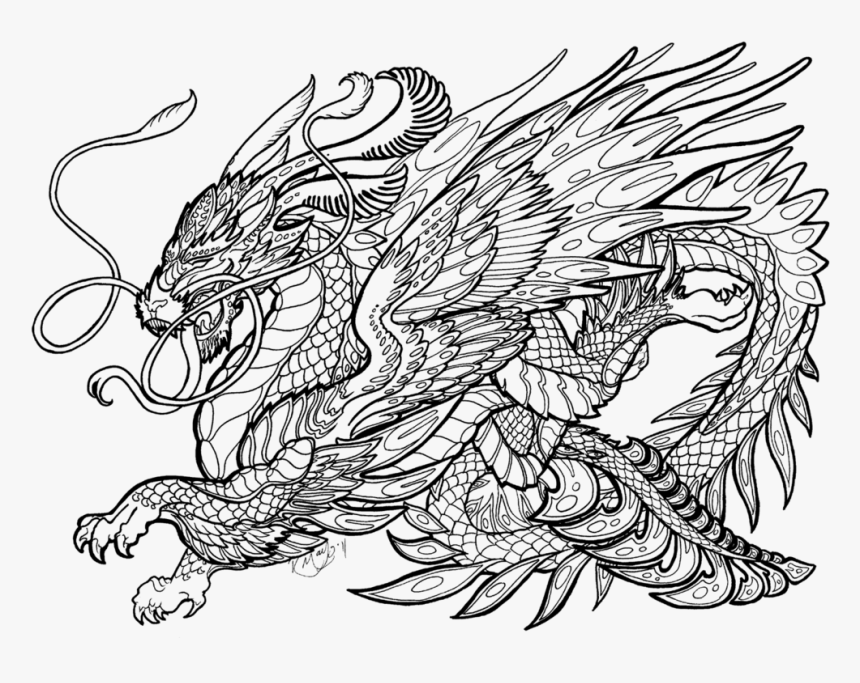 Dragon Coloring Pages For Adults, HD Png Download , Transparent Png Image -  PNGitem
