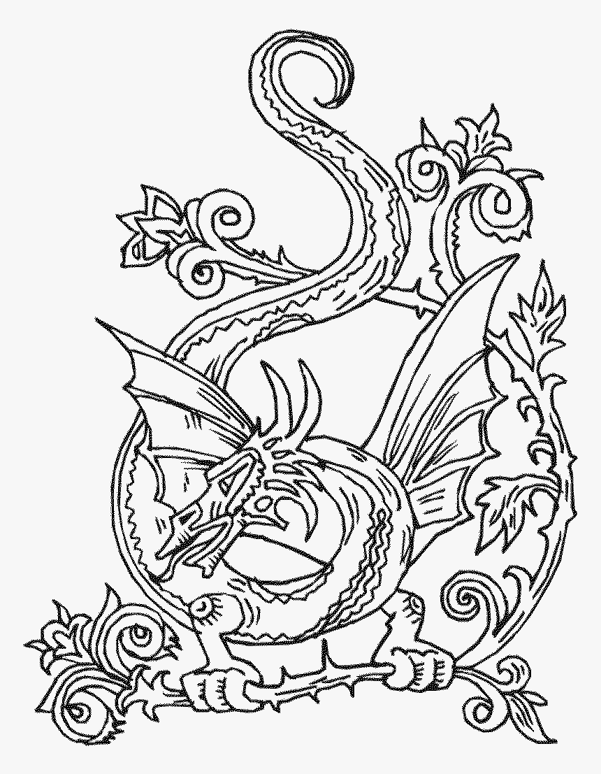 - Adult Coloring Page Celtic Knots, HD Png Download , Transparent
