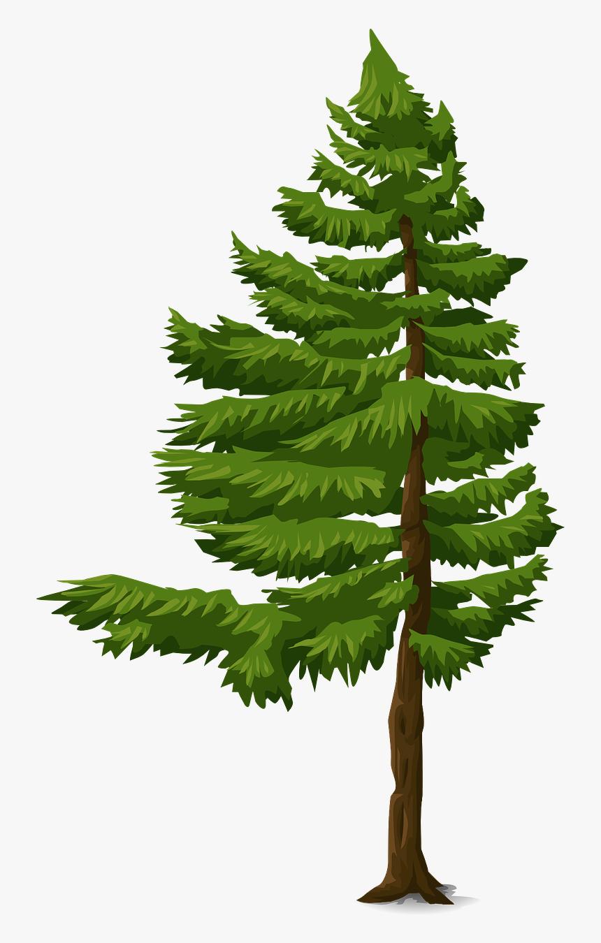 pohon cemara vektor png transparent png transparent png image pngitem pohon cemara vektor png transparent