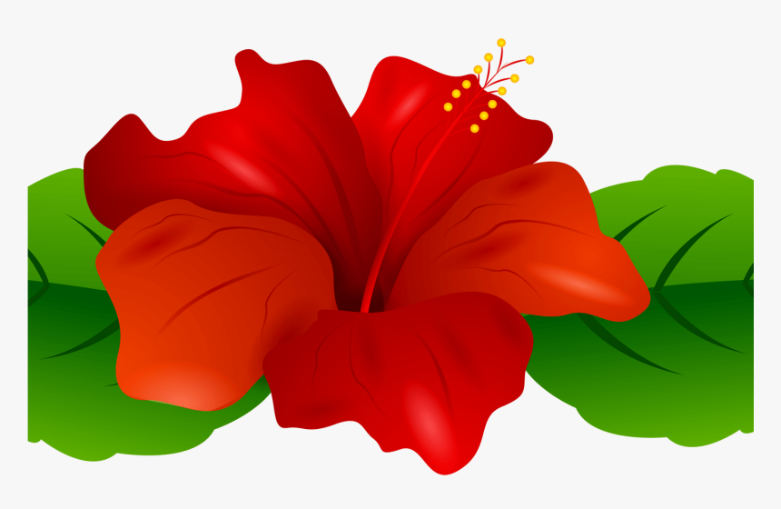 vector clip art online, royalty free & public domain | Hibiscus clip art,  Art drawings for kids, Flower clipart