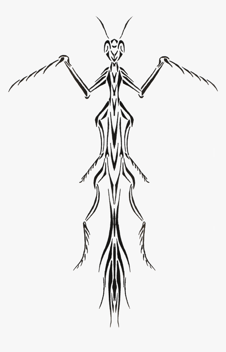 Praying Mantis Tattoo Design Hd Png Download Transparent Png