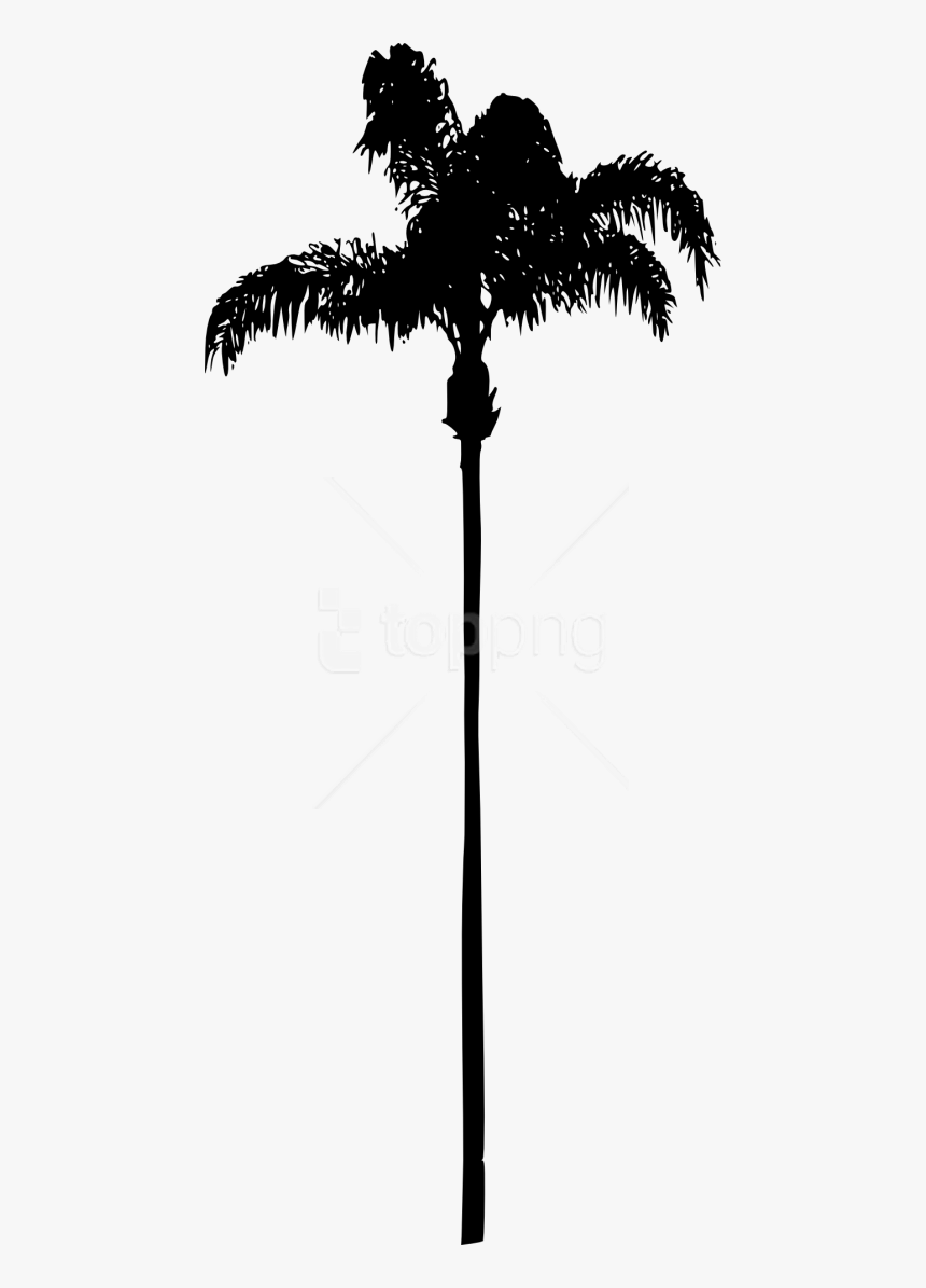 Free Png Palm Tree Png Clipart Palm Trees Without Background Transparent Png Transparent Png Image Pngitem