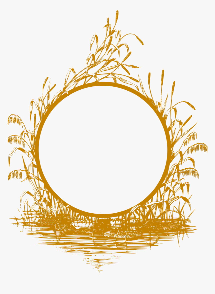Reed Frame Clip Arts Gold Frame Design Png Transparent Png Transparent Png Image Pngitem
