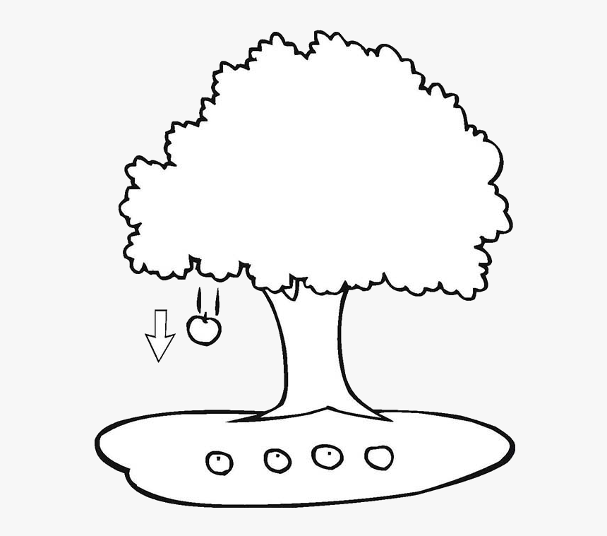 Fall Apple Tree Clipart Black And White Free Best Transparent Apple Falling From Tree Clipart Hd Png Download Transparent Png Image Pngitem