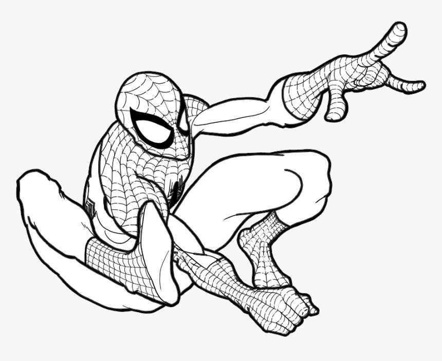 Homem Aranha Para Colorir E Pintar Homem Aranha Para Pintar Hd