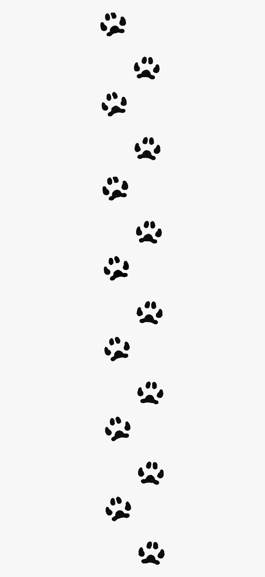 Paw Print Border Line Hd Png Download Transparent Png Image Pngitem Large collections of hd transparent paw print png images for free download. paw print border line hd png download