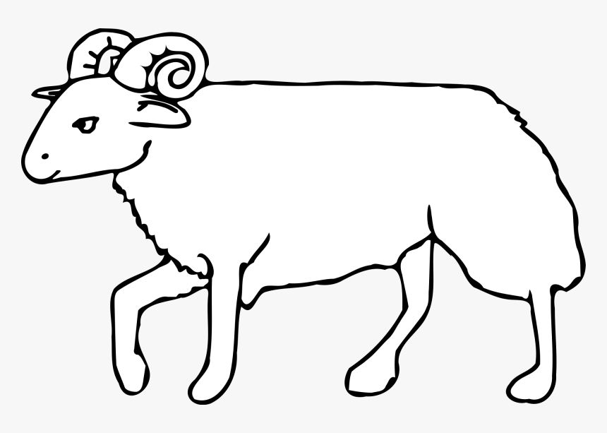 Collection Of Lion Outline Cliparts Omalovanky K Vytisknuti Beran Hd Png Download Transparent Png Image Pngitem Saying no will not stop you from seeing etsy ads, but it may make them less relevant or more repetitive. collection of lion outline cliparts