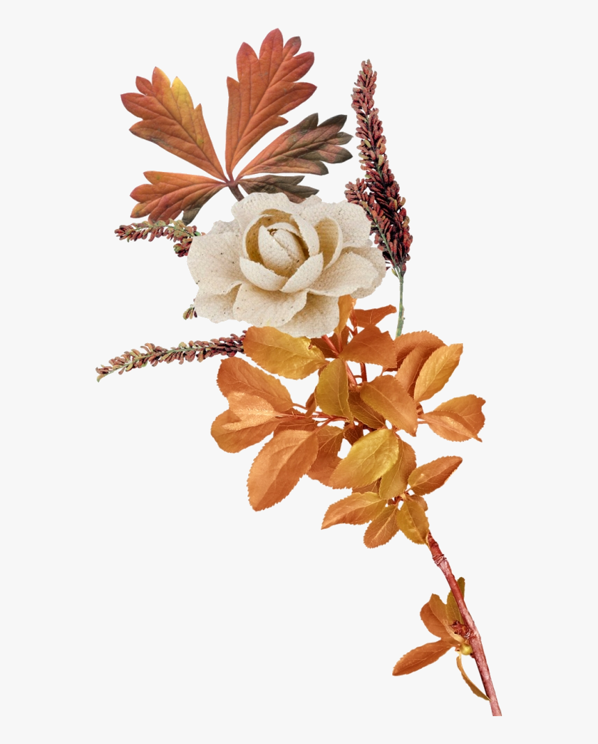 autumn flowers png transparent autumn flower png - transparent autumn flowers