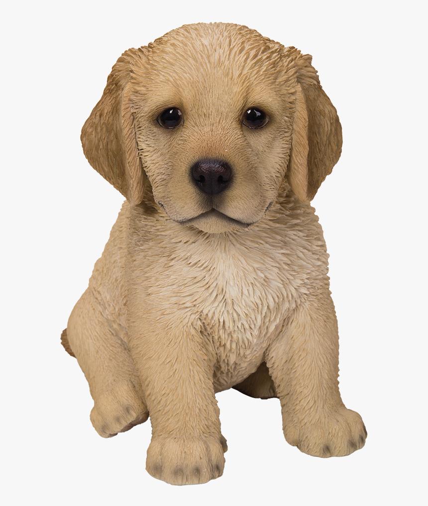 Cute Fluffy Cute Golden Retriever Puppy Hd Png Download Transparent Png Image Pngitem