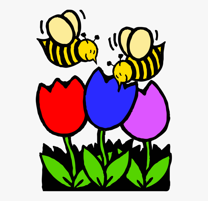- Western Honey Bee Coloring Book Colouring Pages Flower - Coloring Pages Bees  Flowers, HD Png Download , Transparent Png Image - PNGitem