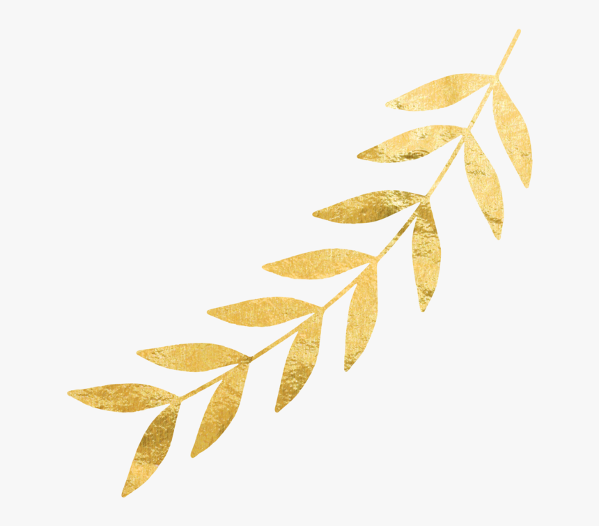 Gold Leaves Png Right Gold Leaf Gold Leaves No Background Transparent Png Transparent Png Image Pngitem