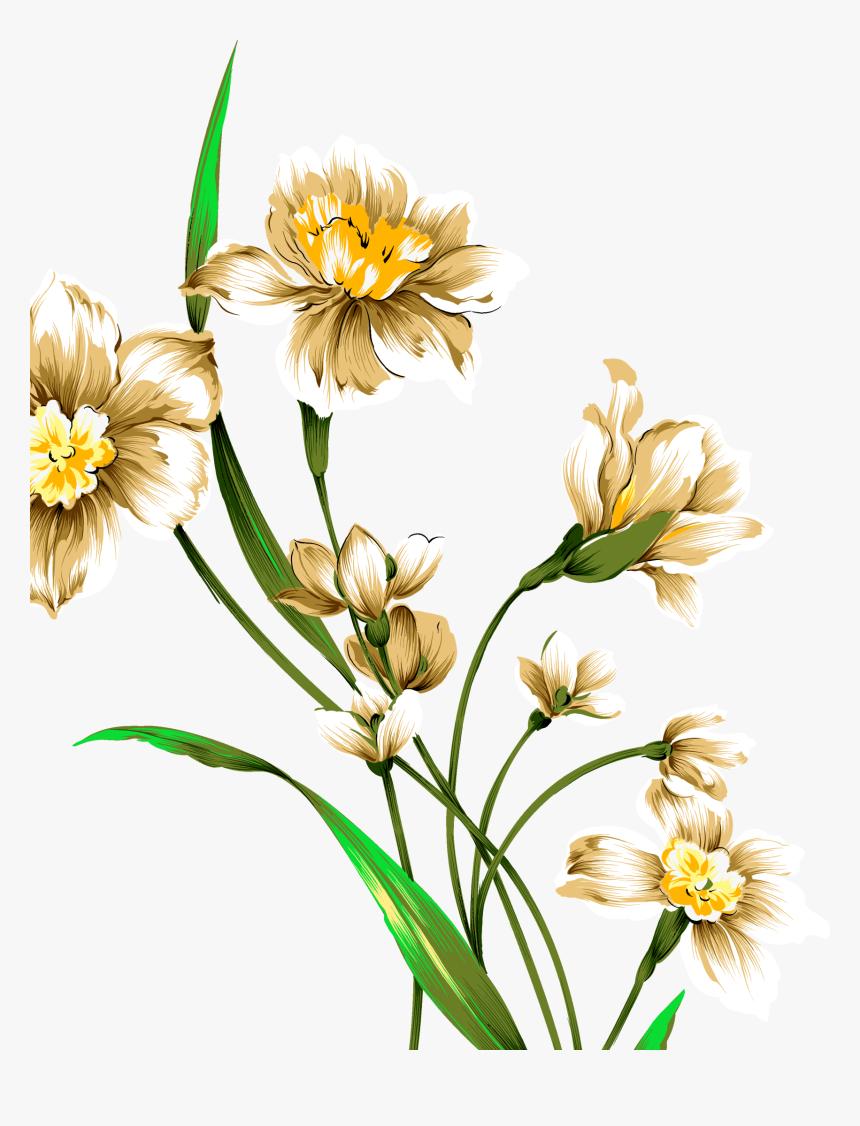 Transparent Daffodil Png Daffodils Drawing Png Png Download Transparent Png Image Pngitem