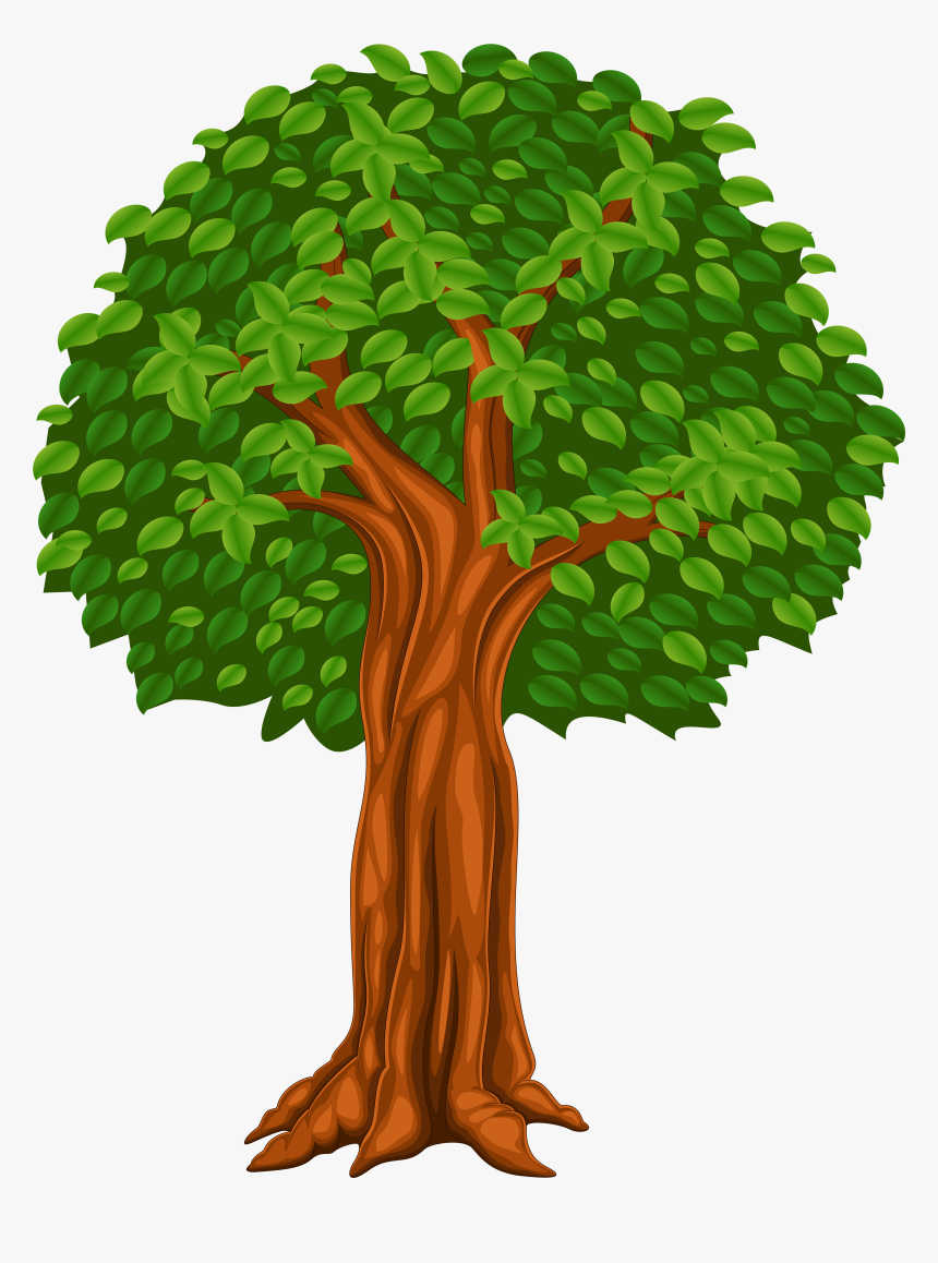 Cartoon Trees Png Transparent Tree Cartoon Png Png Download Transparent Png Image Pngitem Hand drawn cartoon tree material, apple tree, tree logo, greenery png and vector with transparent background for free download. cartoon trees png transparent tree