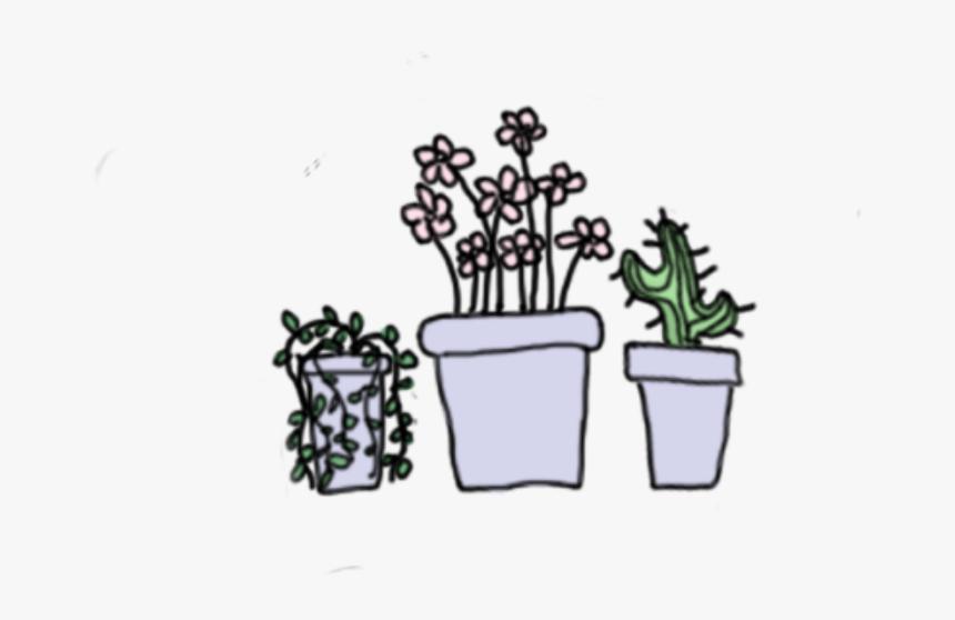 plants cactus succulent drawing pastel cute aesthetic